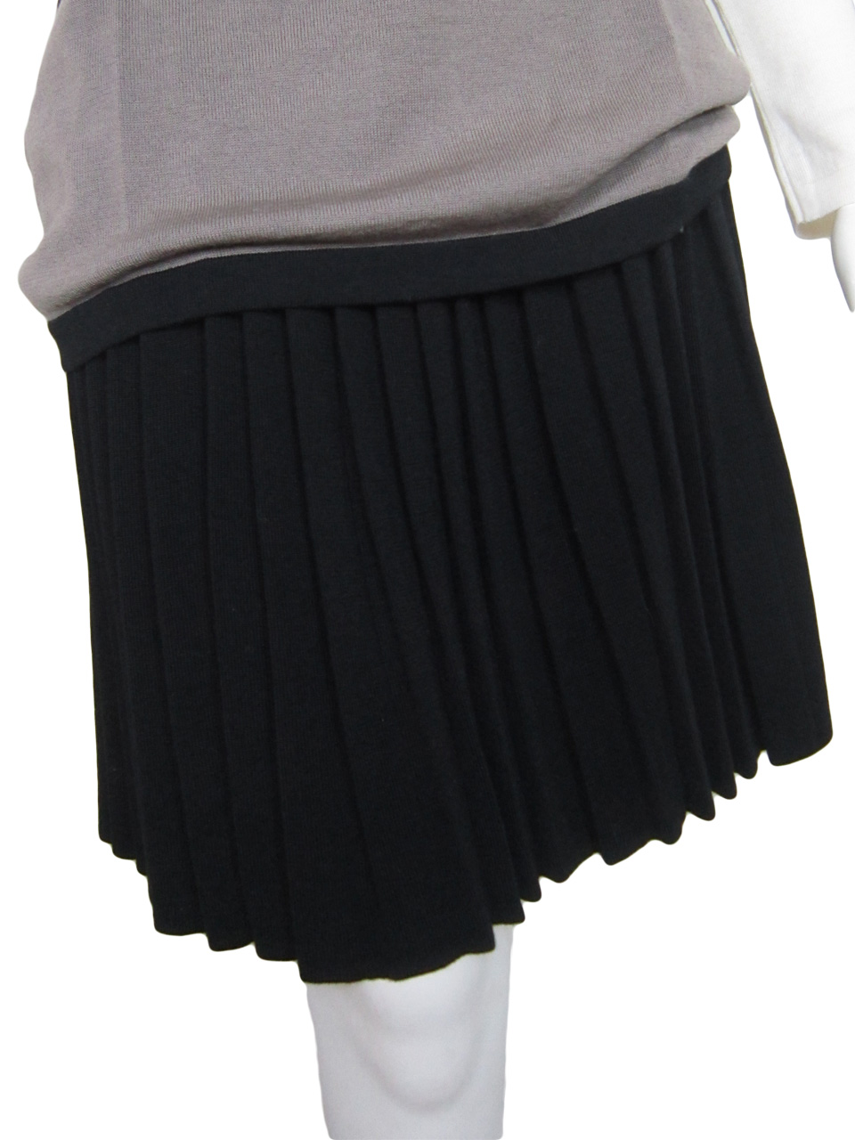 Pleated Skirt in United Knit Point